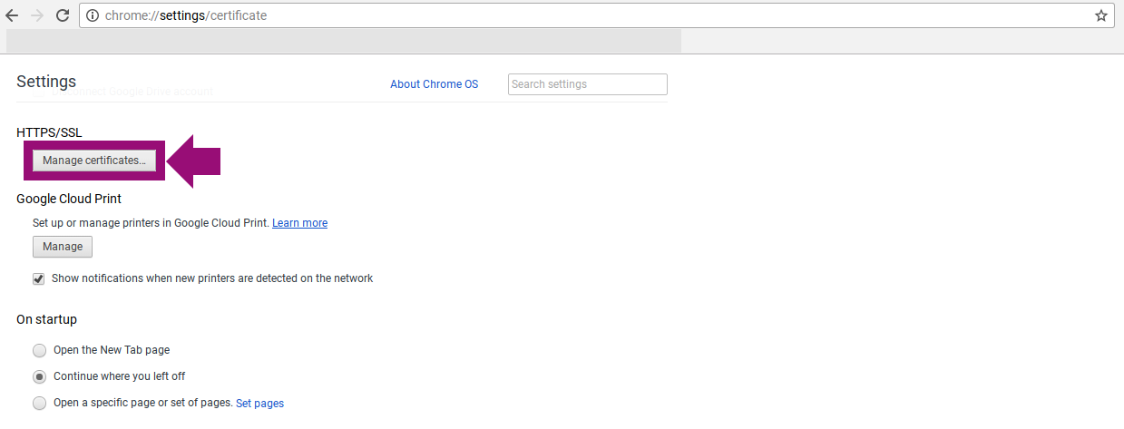 Installing an SSL Certificate on a Chromebook (Manually)
